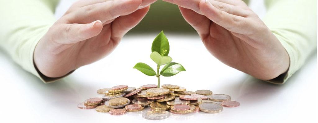 que son negocios verdes y qué hábitos verdes llevan a cabo
