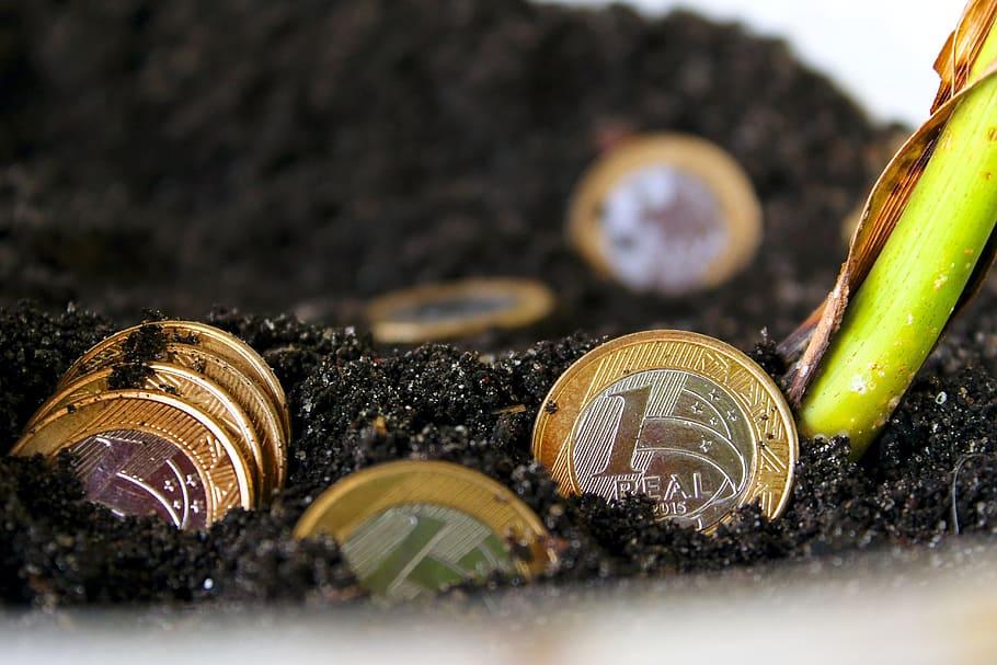 soñar con dinero monedas suelo