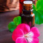 Aceite Esencial de geranio , sus beneficios y propiedades para la salud.
