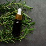 Aceite esencial de romero, sus usos, propiedades y beneficios para la salud.